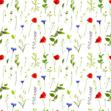 Wildflowers seamless pattern. Nature background