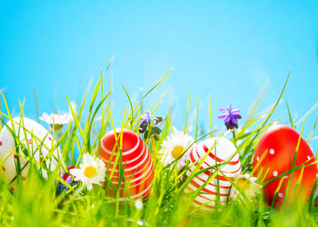 Easter background with colorful eggs in green grass