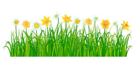 Spring nature border with flowers and green grass. Vector illustration Ilustração