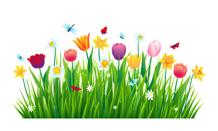 Colorful flowers with green grass isolated on white background. Vector illustration Ilustração