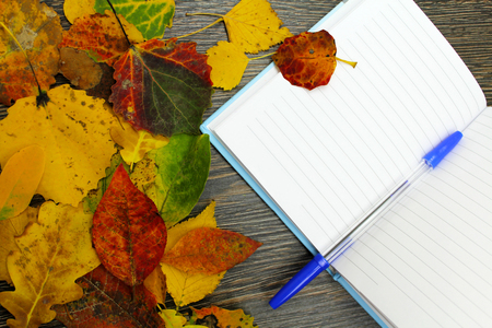 sheet: Notepad with pen on a wooden table with fallen leaves. Stock Photo