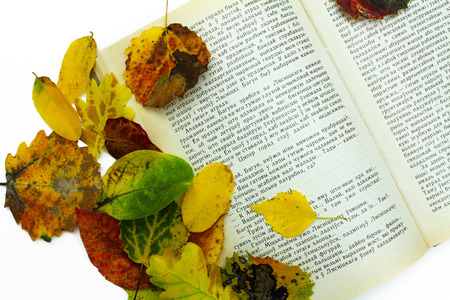 sheet: Open book on white background with fall leaves.