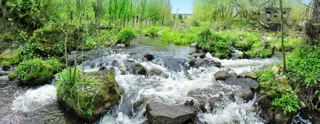 Panoramic image of a beautiful forest waterfall. A forest stream. Stock Photo