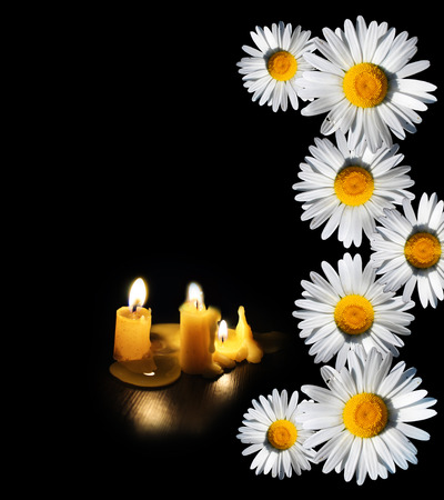 White daisies and candles isolated on black background.