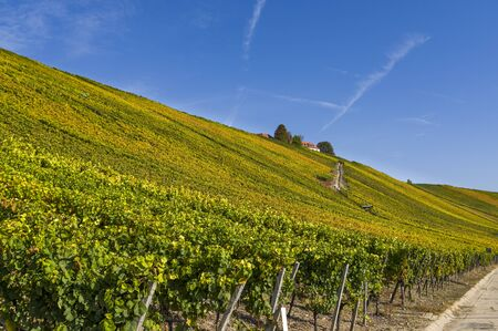 View over the idyllic vineyards in the village Escherndorf, town Volkach at the Mainschleife with Vogelsburg Castle in autumn with colorful leaves, sunshine, blue sky and wayside shrine