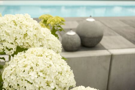 Hydrangeas and decoration at the swimming pool selective focus