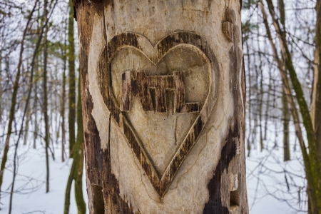 Heart Carved Tree with I Love Montreal message and snow in the background