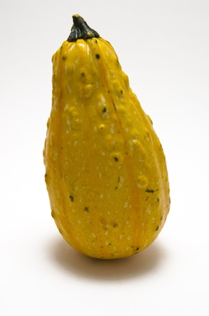 Single pear-shaped pumpkin over a white background