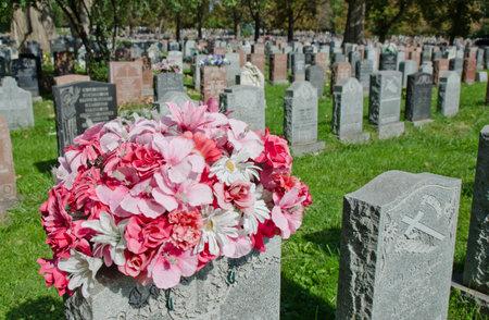 墓石とモントリオールの墓地に花 報道画像