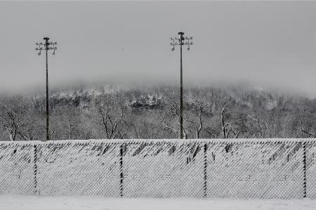 Snowy fences with mont-royal mountain in the background, covered with fog, montreal photo