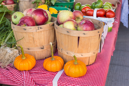 bushel: Apples and Pumpkins at the local food market