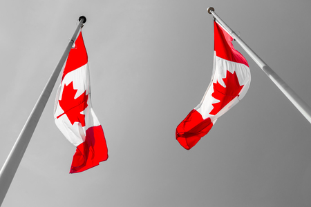 grey  sky: Two Canadian flags waving over grey sky