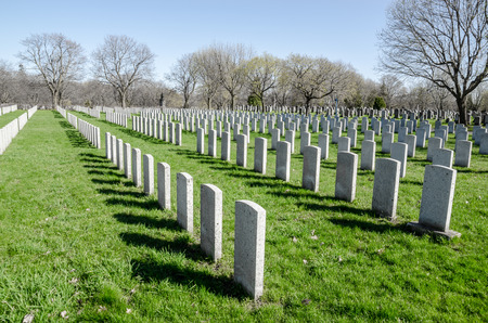 cemetary: Rows of anonymous military headstones in a cemetary