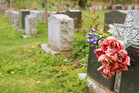 gravesite: Flowers on a tombstone in a cemetary with hundreds of tombstones in the background