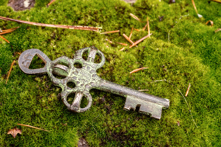 Old treasure key on green moss Stock Photo
