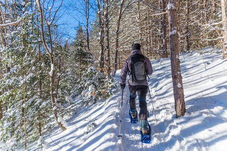 snowshoeing: Young man snowshoeing in winter,  in the Quebec eastern townships region, Canada