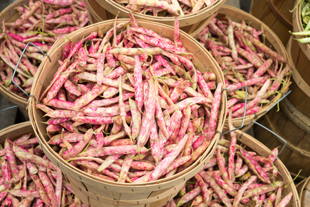 ayers: Cranberry beans at the market