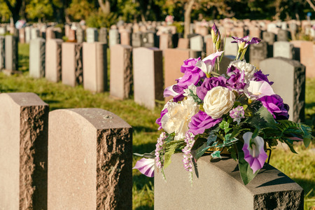 Flowers in a cemetery with headstones in the background at sunset Stockfoto