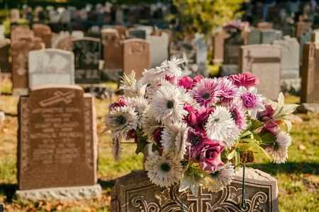 headstones: Flowers in a cemetery with headstones in the background at sunset Stock Photo