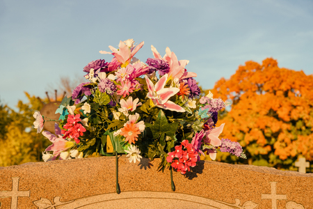 Flowers in a cemetery with large maple trees in the background, in autumn (Beloeil, Quebec, Canada)