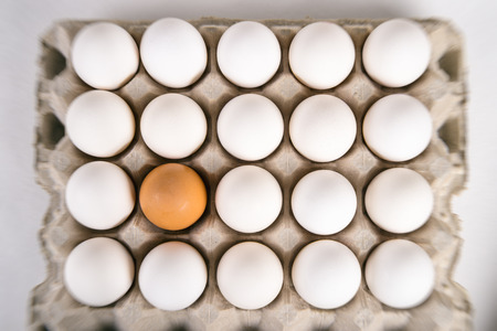Brown egg surrounded by white eggs. Individuality and difference concept.