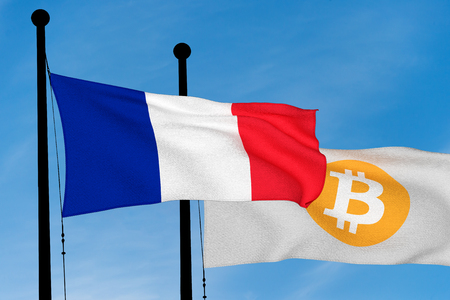 French flag and Bitcoin Flag waving over blue sky (3D rendering)