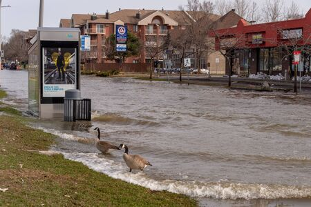 Pierrefonds-Roxboro, Quebec, Canada - 29 April 2019: Waves in a submerged street during spring floods, after a truck passed