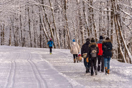 Montreal, CA - 01 January 2020: People walking on a snowy trail in Montreal's Mount Royal Park (Parc Du Mont-Royal) after snow storm.