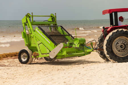 Tulum, Mexico - 12 August 2018: workers are removing Sargassum seaweed from the beach at Playa Paraiso with a Barber Surf Rake Beach Cleaner.