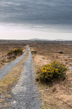 connemara: denude the landscape Connemara