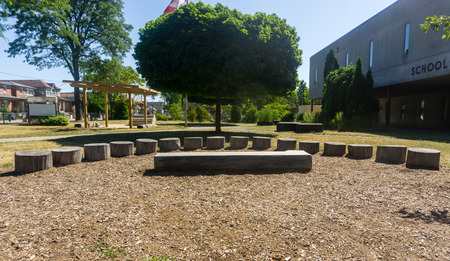 outdoor classroom on sunny day on school grounds amphitheatre stage wood logs tree neighborhood