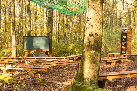 empty outdoor class room in forest with blank classic green chalk board, book shelf and school desks and benches for students with trees as backdrop and brown autumn color leaves on ground