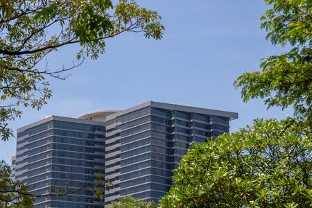 tall modern office building in Bangkok framed by green trees on sunny day