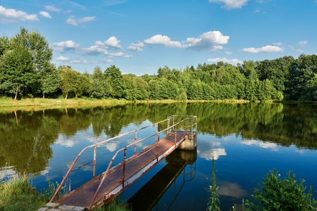 Pond in summer landscape, Czech Republic, Europe