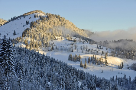 Beautiful Winter Morning in the Alps in Bavaria