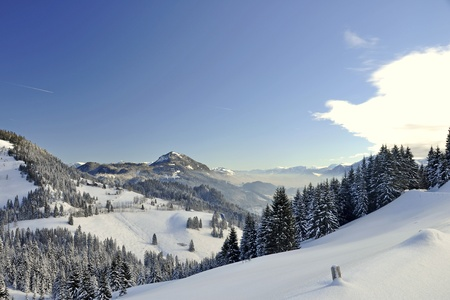 Winter in the Alps in Bavaria photo