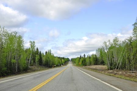 Endless Highway through the wilderness of Alaska photo