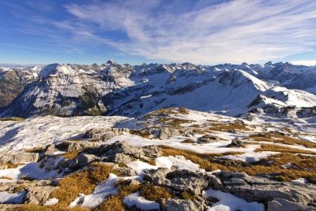 treeline: mountain panorama