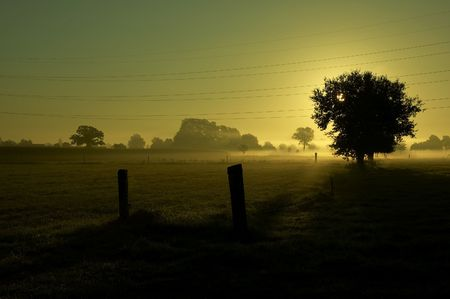 September morning with fog. Stock Photo