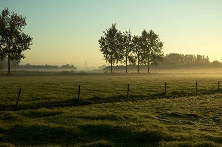 september morning in holland photo