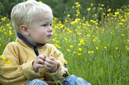 3 year old: A 3 year old sitting in the grass and between buttercups.
