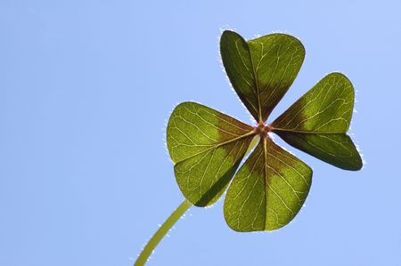 Four leaf clover on a blue background with the sun coming from behind Stock Photo - 980867