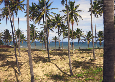 Imbassa Beach in Salvador, Bahia in Brazil