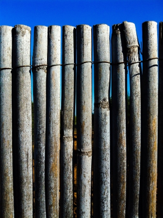 enclose: Enclose of cane Stock Photo