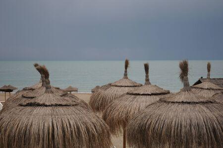 Heather umbrellas on the beach sand