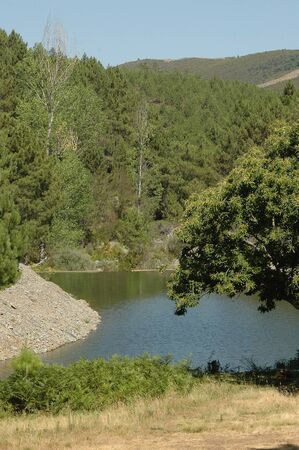 Natural pool surrounded with vegetation in Caceres