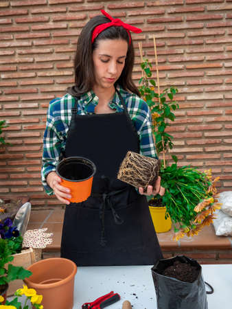 Beautiful Young woman gardening at home planting flowers in pots