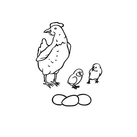 Vector sketch farm birds. Breeding laying hens and chicks, three eggs. Set isolated black-white illustration Çizim