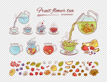 Vector tea constructor flowers fruits brew process. Make and pour in transparent cup hot or cold aromatic drink with blossoming tea berries leaves. Sketch set collection hand drawn illustration Vectores