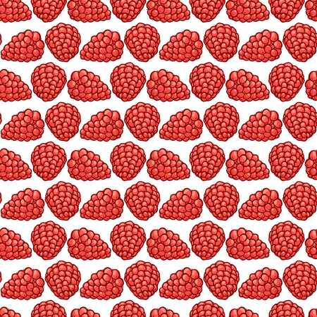 Raspberry berries seamless pattern. Vector background for design label malines jam, juice and fruit tea packaging or printing fabric. Sketch illustration of ripe autumn harvest. Illustration